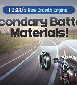 POSCO's New Growth Engine, Secondary Battery Materials